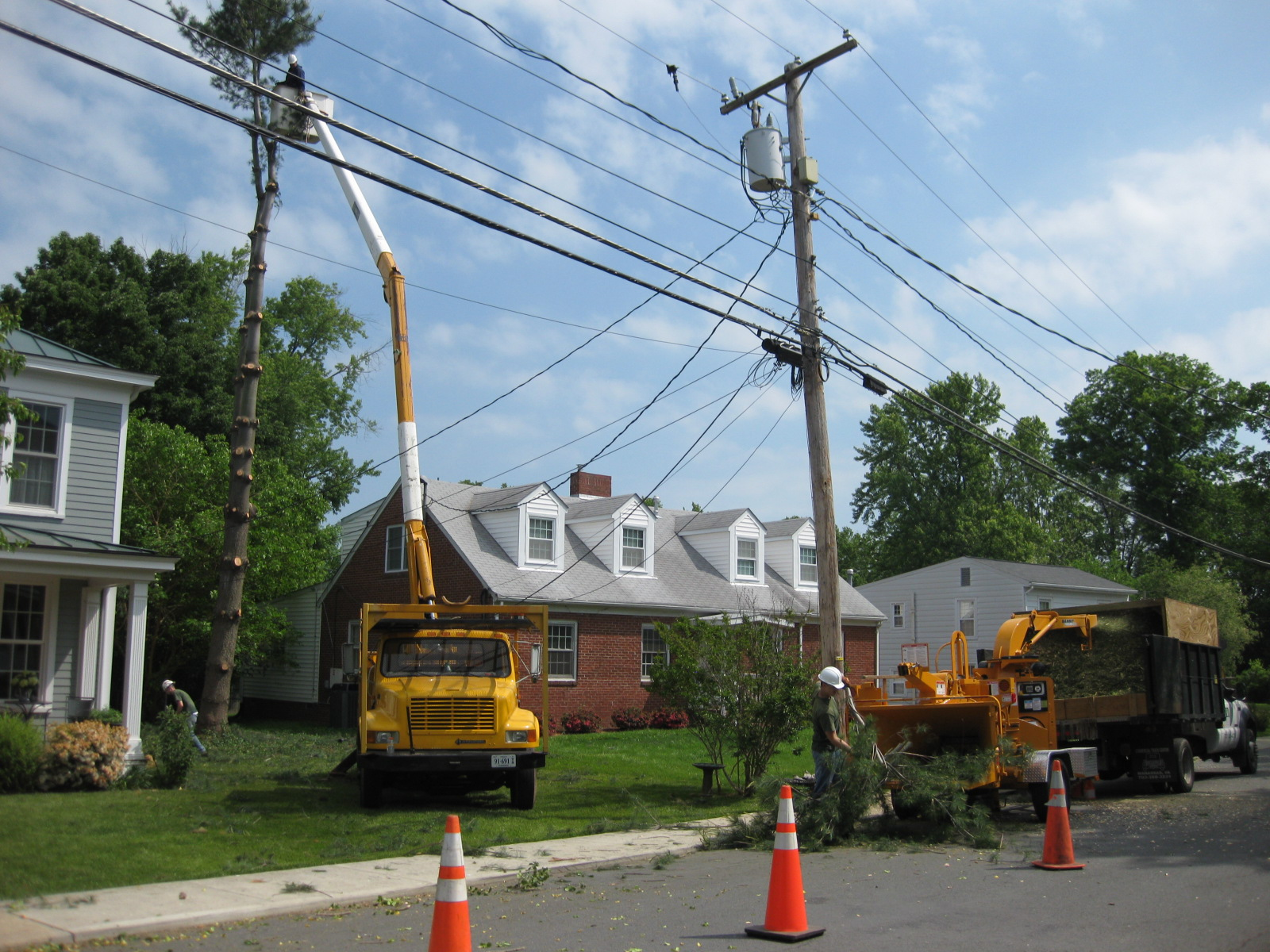 Tree Services Fairfax Va Four Brothers Tree Landscaping